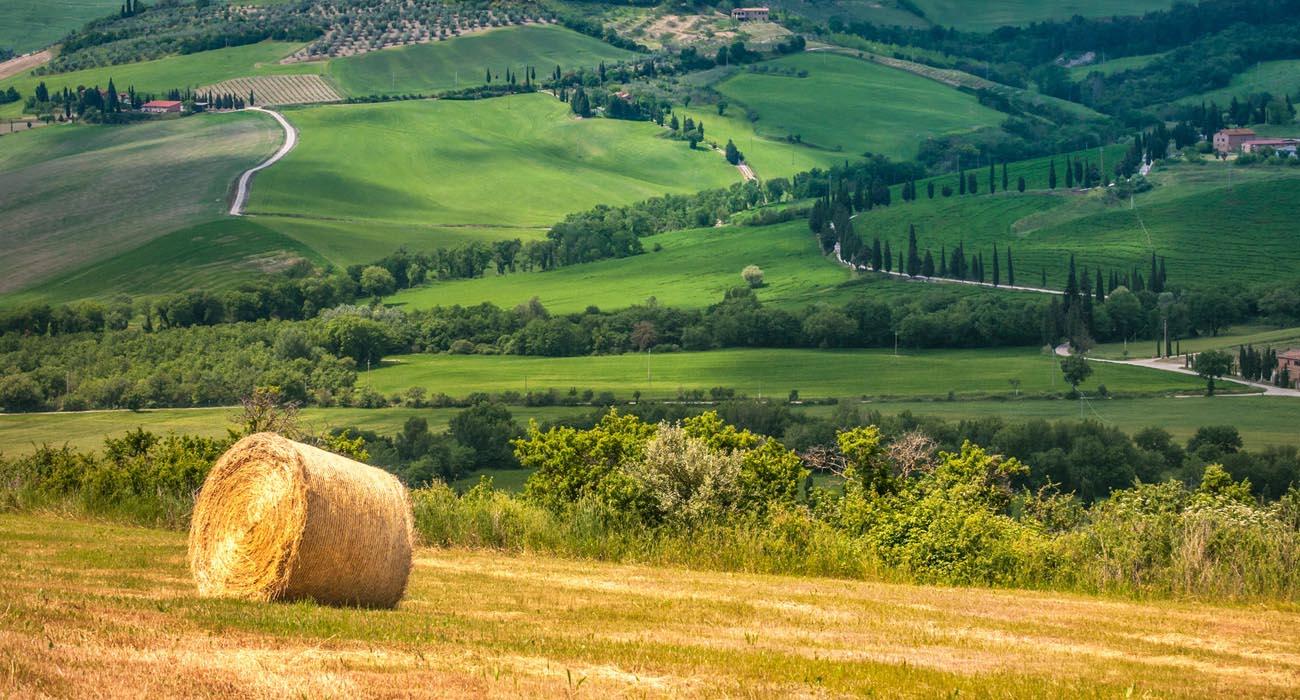 immagine-del-tipico-paesaggio-toscano