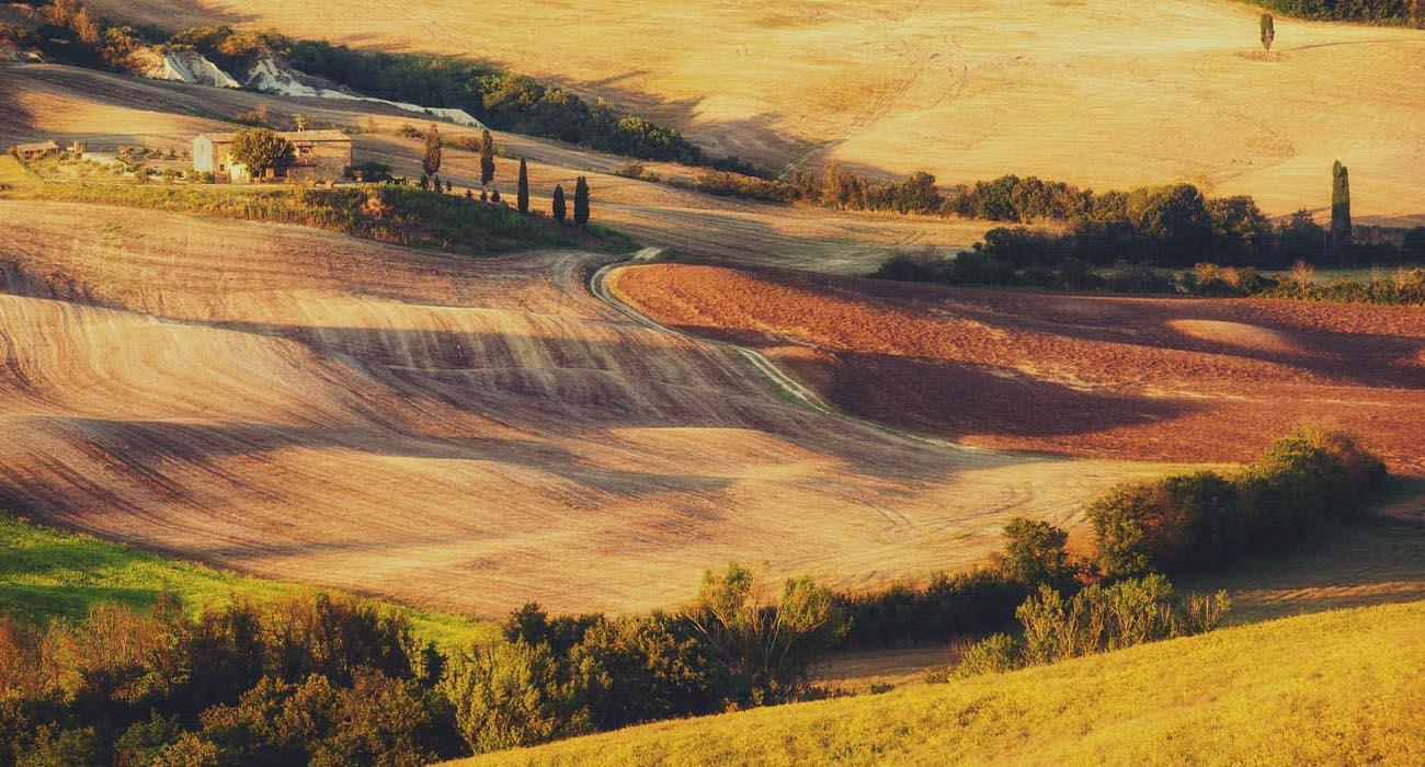 paesaggio-rurale-nella-luce-del-tramonto